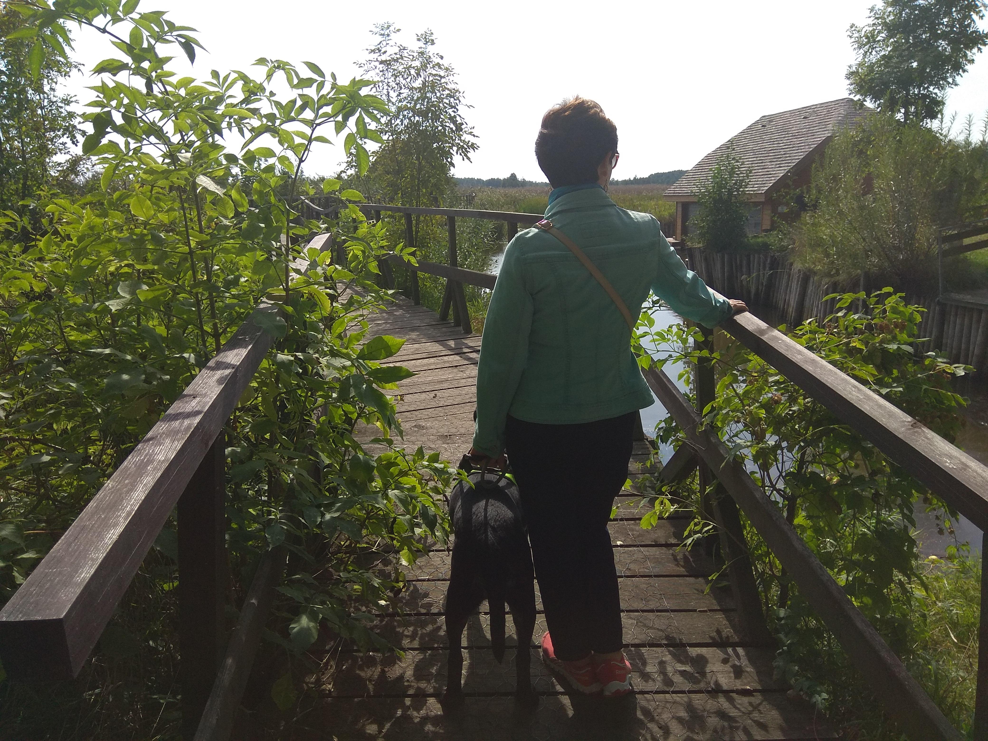 Na drewnianym szlaku narwiańskiego parku stoi brunetka w krótkich włosach i twarzą lekko skierowaną w prawą stronę. Jej zielona bluza ładnie komponuje się z otaczającym ją krajobrazem pełnym zieleni. Pani stoi tyłem, przy jej lewej nodze asystuje pies przewodnik, z prawej strony widoczna stara, mała chata, kryta strzechą.