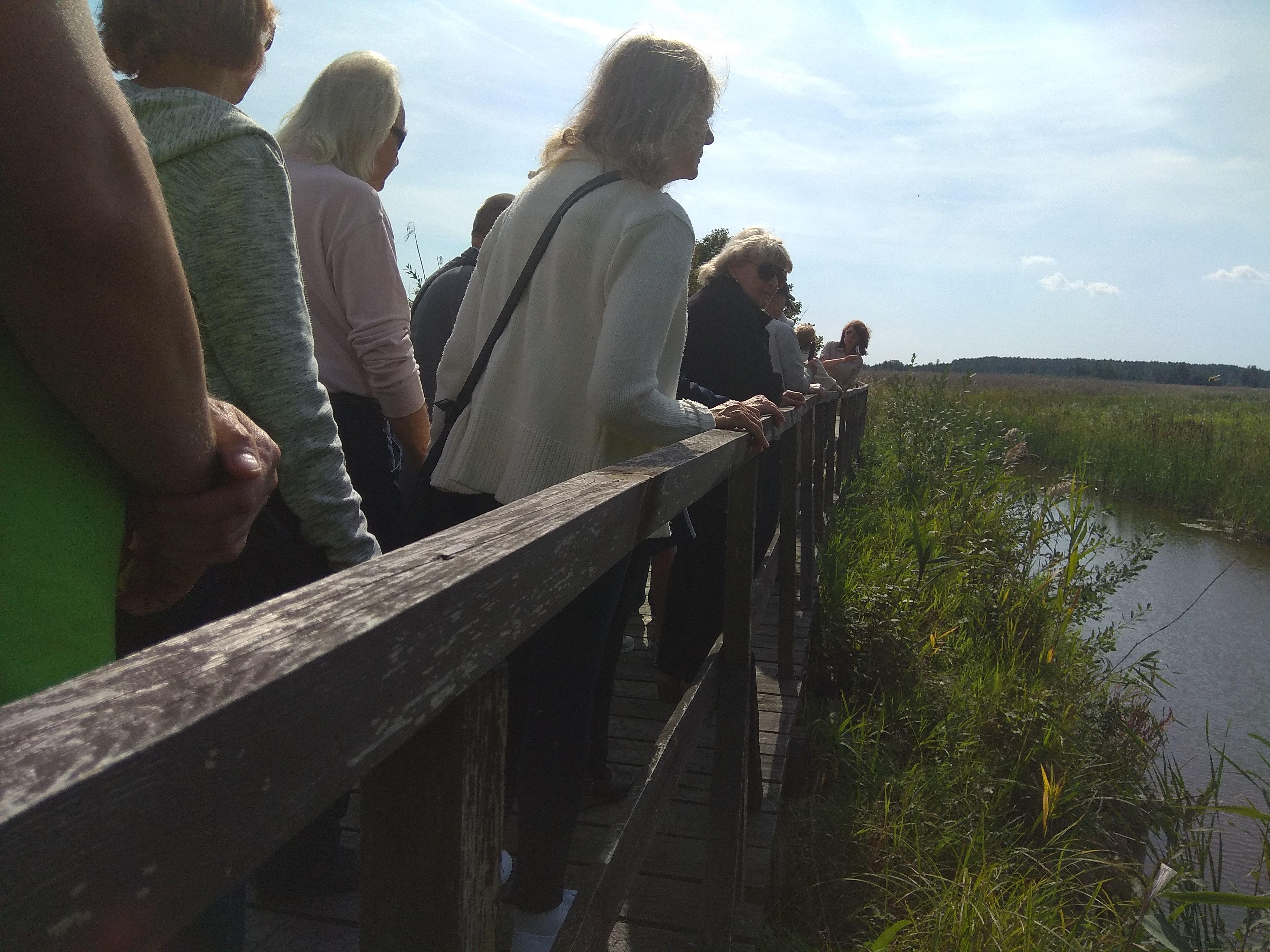 Drewniana kładka, po której idą nasi zjazdowicze. Z prawej strony płynie Narew. Jedna z Pań w białej koszuli wychyla się w stronę rzeki.