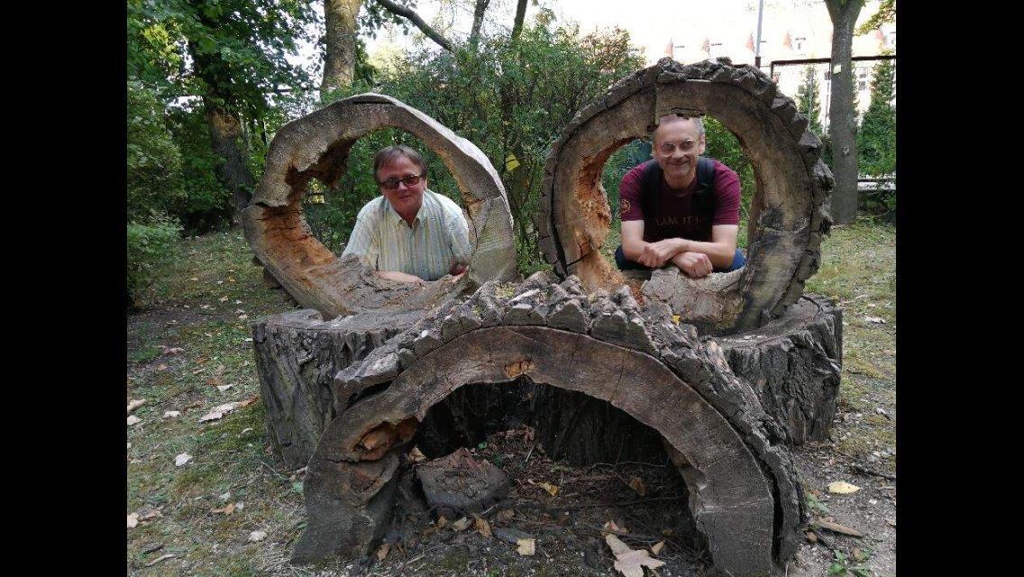 W ogrodzie botanicznym, dwaj panowie wkomponowani w konstrukcję z wydrążonych, położonych pni drzew